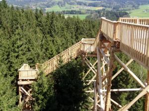 Für Schwindelfreie: Der gut 2 km lange Baumkronenweg in Kopfing