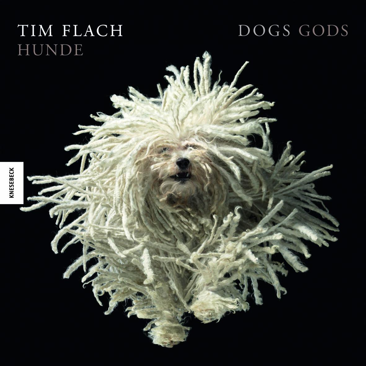 Tim Flach: Hunde
