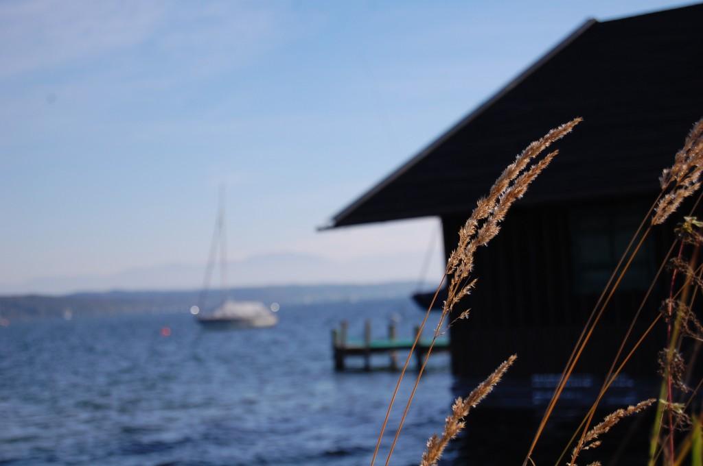 Ein traumhafter Tag am Starnberger See...