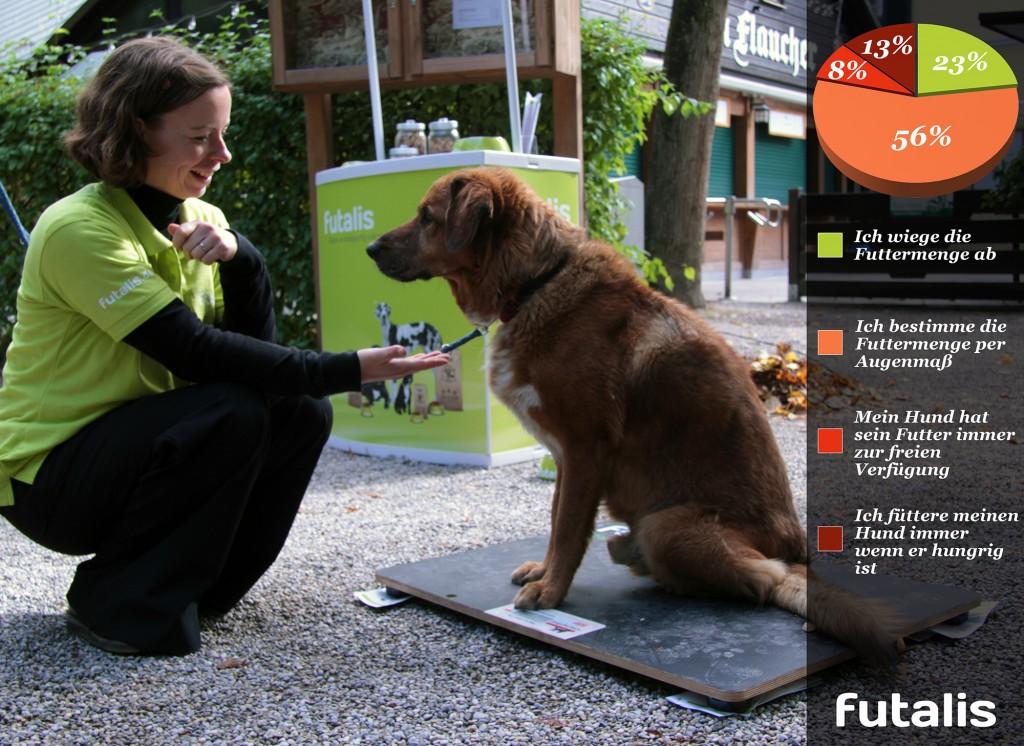 Das unterschiedliche Fütterungsverhalten von Hundebesitzern. (© futalis)