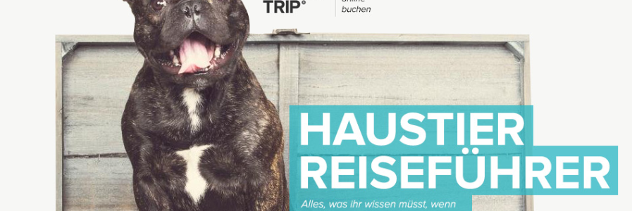 Aufgestöbert: HouseTrip Haustier Reiseführer