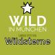 Wild in München: Futter von Wildsterne gewinnen