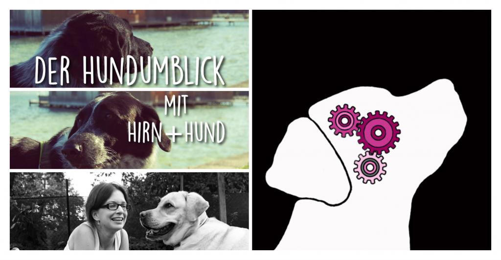 Der Hundumblick: Claudia von Hirn+Hund