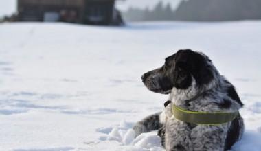 Isarhunderunde 14: Schneetour auf die Aidlinger Höhe