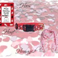 Schönes Hundeleben: Valentinstag