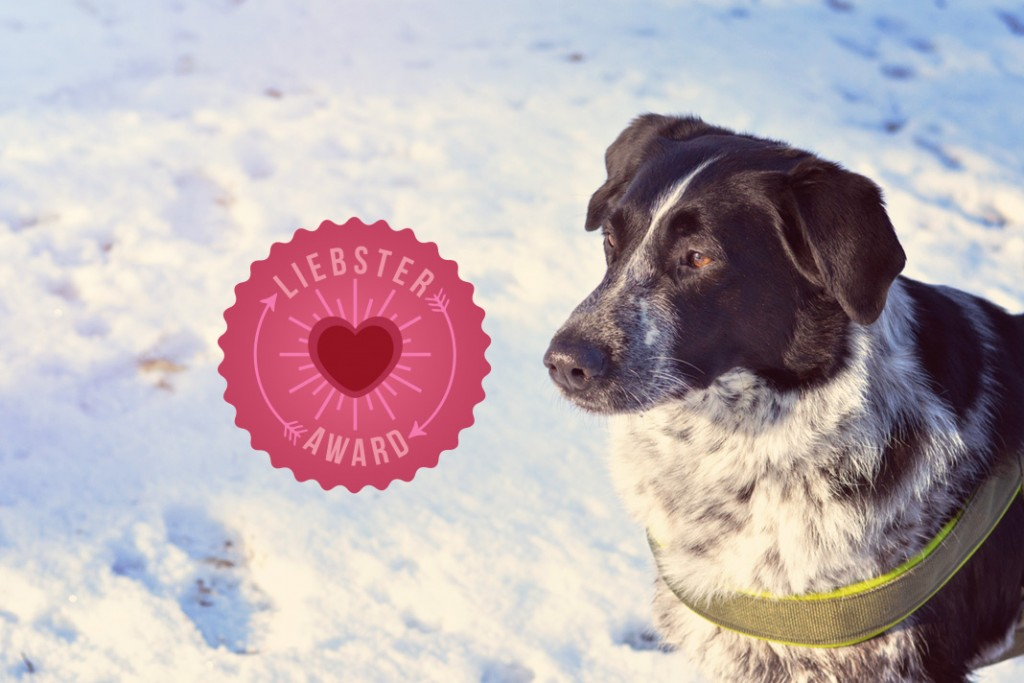 liebster-award-isarhunde-3