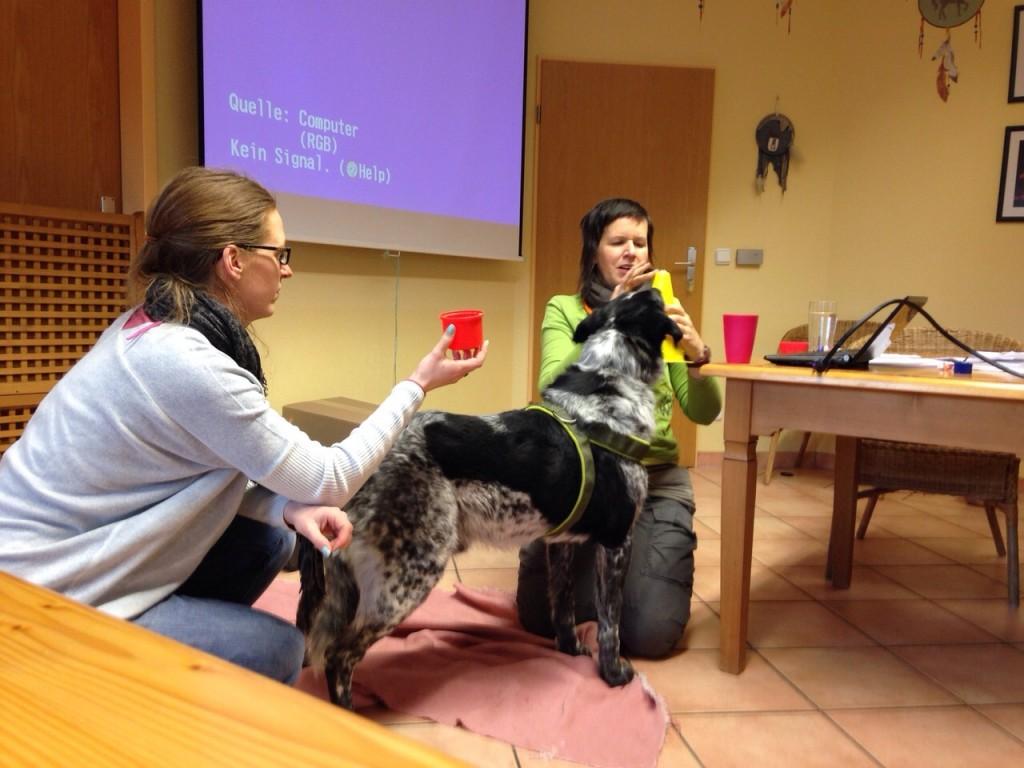 """Den Alltag positiv gemeinsam erleben: Seminar zur """"Positiven Psychologie"""" mit Christina Sondermann"""