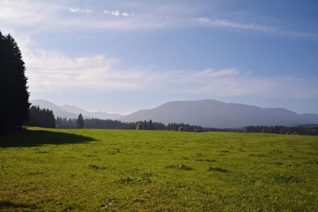 Bestes Wanderwetter lockte uns in den Ammergau
