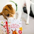 """IS THAT MY DINNER? A Holiday Scratch & Sniff Story"" von The Honest Kitchen (umgesetzt von Red Tettemer O'Connell + Partners )"