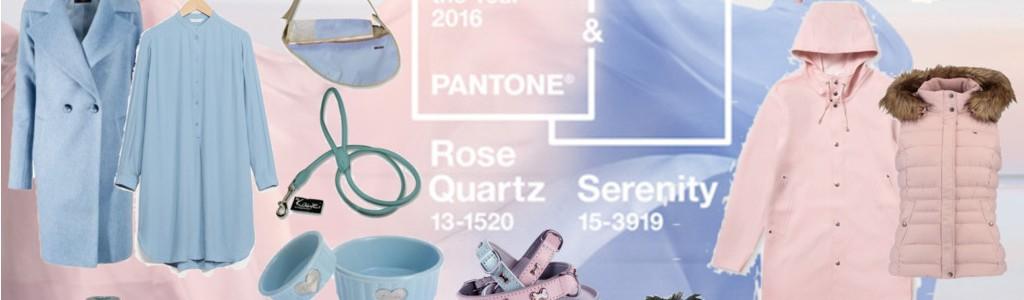 Schönes Hundeleben: Rose Quartz und Serenity – Farben des Jahres 2016