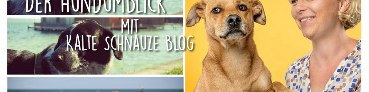 Der Hundumblick: 6 Fragen an Silvana vom Kalte Schnauze Blog