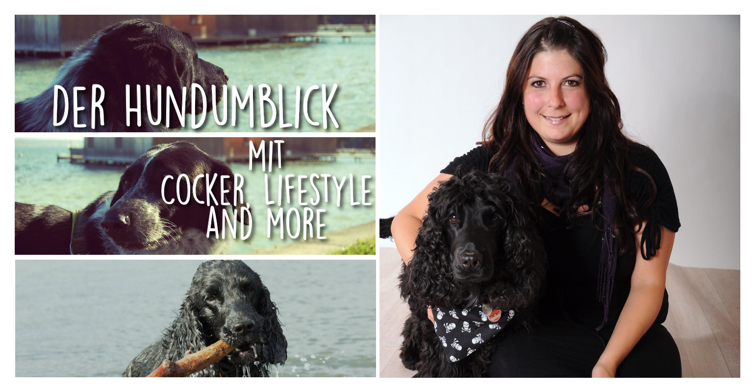 Der Hundumblick: 6 Fragen an Steffi von Cocker, Lifestyle and more