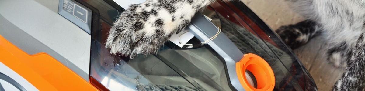 Die Tatortreinigerin – THOMAS: AQUA+ PET & FAMILY im Test*