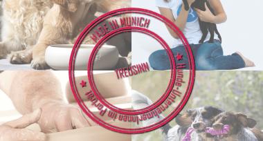 Treusinn – Made in Munich: Hunde-UnternehmerInnen aus München im Porträt