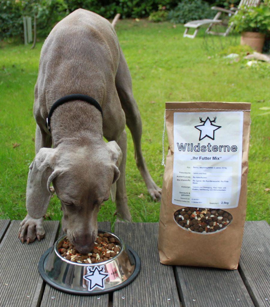 Matina sorgt bei Wildsterne dafür, dass es den Hunden nicht nur schmeckt, sondern sie auch optimal versorgt werden. Foto: Wildsterne