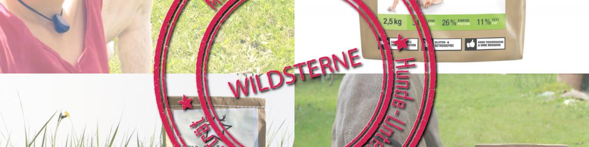 Wildsterne – Made in Munich: Hunde-UnternehmerInnen aus München im Porträt