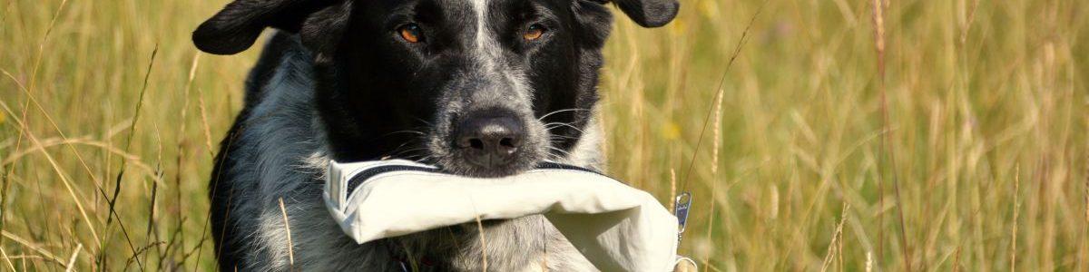 Getestet: Das Segeltuch-Futterdummy von Treusinn